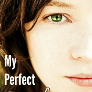 My Perfect Imperfections Blog Tour