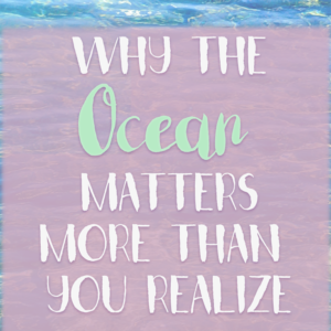 Why the Ocean Matters More Than We Realize